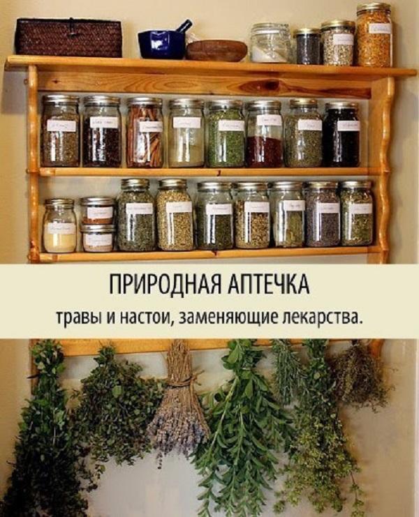 Природная аптечка
