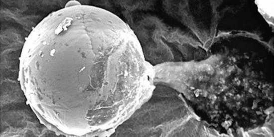 Микроскопический металлический шар, обнаруженный на высоте 27 километров
