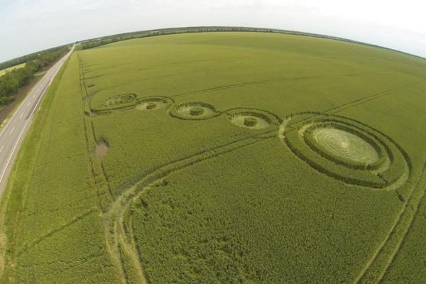 В Адыгее круги на полях проверили на угрозу для жизни