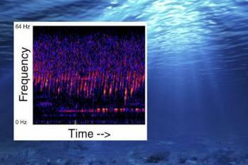 странные звуки в Тихом океане доносятся из базы инопланетян