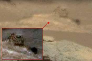 Астроном-любитель обнаружил на Марсе статую Сфинкса
