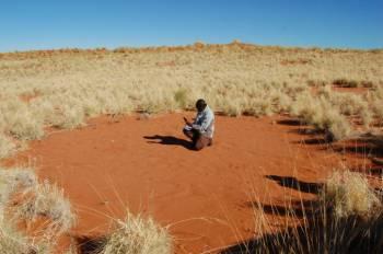 Таинственные круги в Намибии.