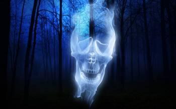 Беспокойные черепа