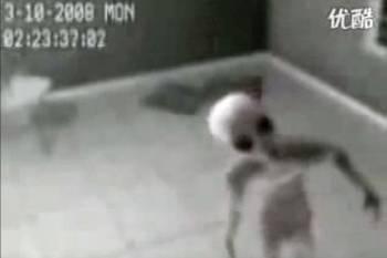 Китайцы изловили инопланетянина?