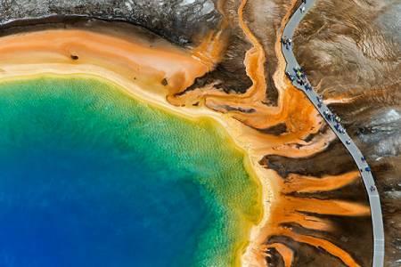 Биологи раскрыли тайну происхождения жизни