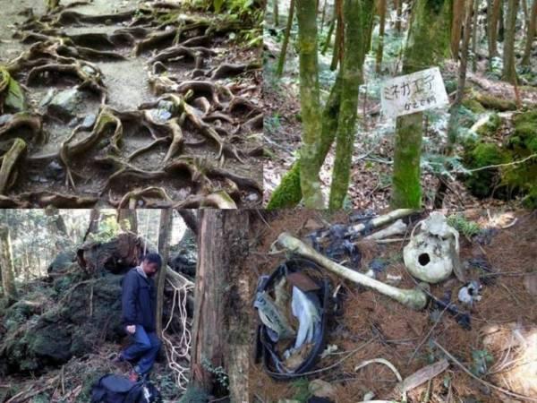 Призраки японского леса самоубийц