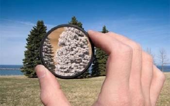 Ученые: Окружающий мир является иллюзией