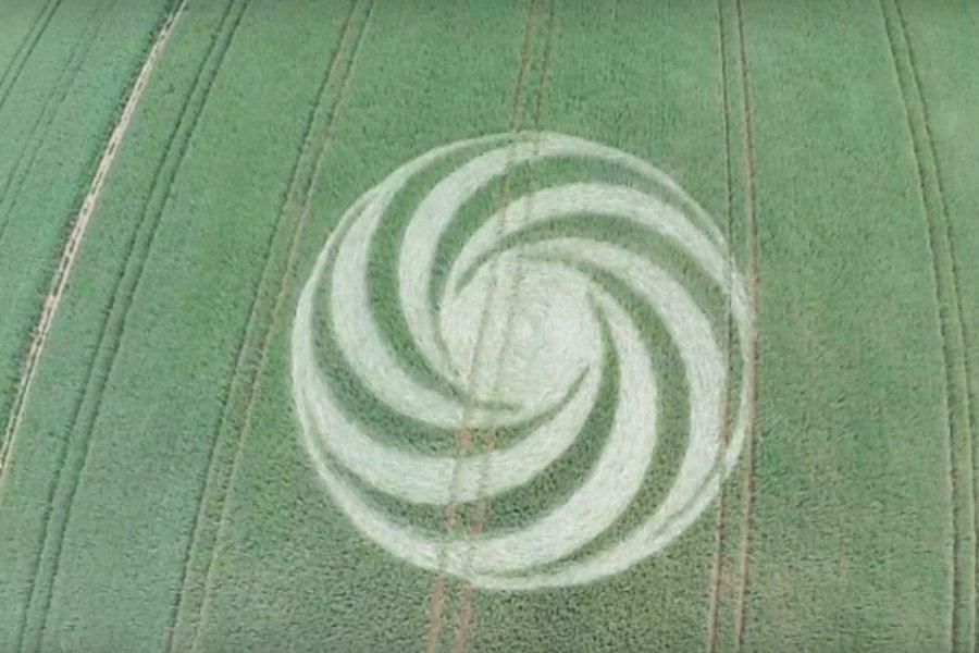 В Германии на поле пшеницы обнаружен закрученный круг