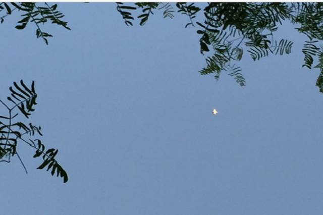 НЛО в форме конуса заснят над Хьюстоном