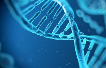 генетика, геном, генная инженерия,